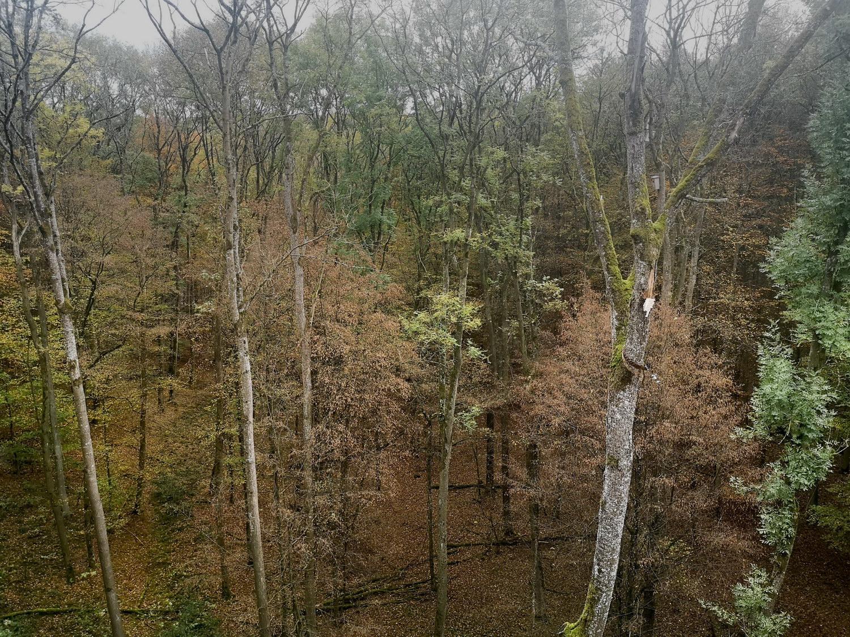 45 - Herbstfahrt 2019